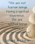 WE are spiritual beings having a human experience